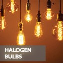 Halogeb Bulbs